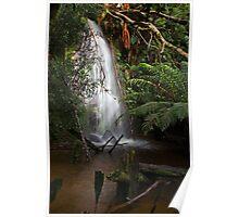 Rainforest Splashpool Poster