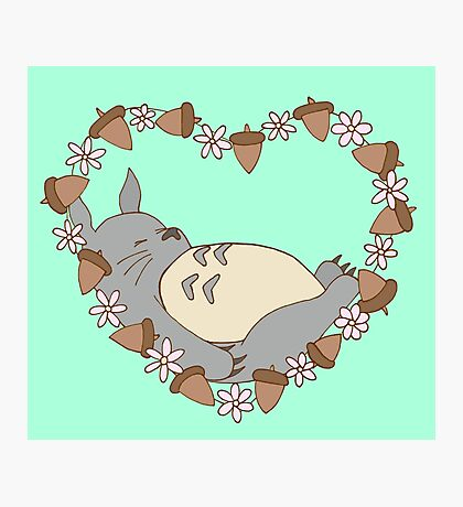 Sleeping Totoro - Green Photographic Print