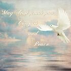 May God grant you Comfort and Peace by Barbny