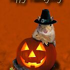 Thanksgiving Pilgrim Squirrel by jkartlife