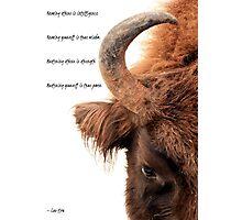 Wisdom, strength and power Photographic Print