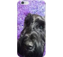 Schnauzer iPhone Case/Skin