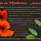 Herbs as Medicines: Nasturtium by cdwork