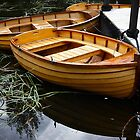 Boats for Hire, Richmond, Tasmania by Odille Esmonde-Morgan