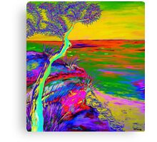 Looking out the sea-2 Canvas Print