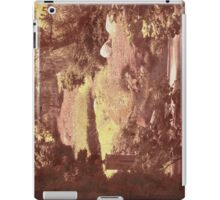 Alcove iPad Case/Skin