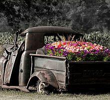 Jalopy Garden by sundawg7
