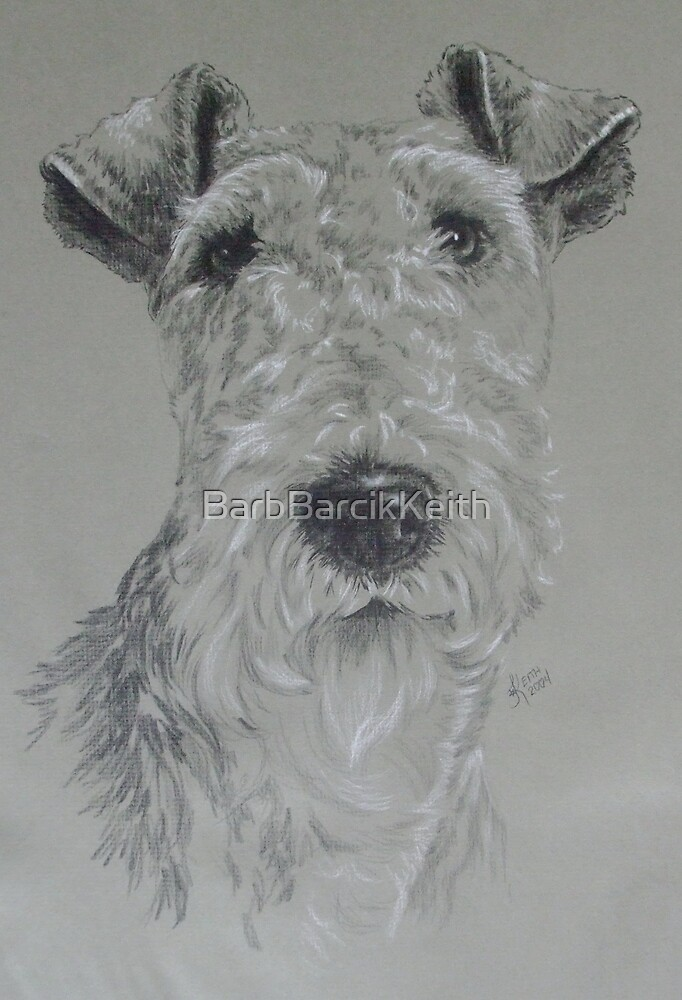 Wire-haired Fox Terrier by BarbBarcikKeith