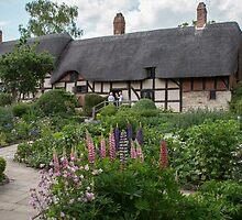 Ann Hathaway's Cottage , Stratford Upon Avon  UK 2 by Pauline Tims