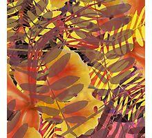 Tropical Vibe Photographic Print