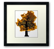 fire Framed Print