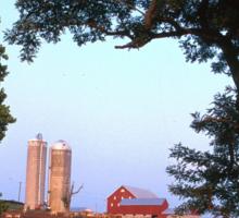 Dairy Farm Sticker