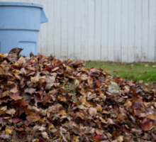 Beautiful Fall Colors Sticker