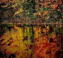 Autumn style by Jean-François Dupuis