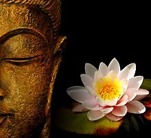 BUDDHA AND FLOWER by BerylDov