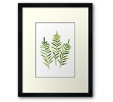 Green Leaves Fern Poster Watercolor Painting Flowers Illustration Framed Print