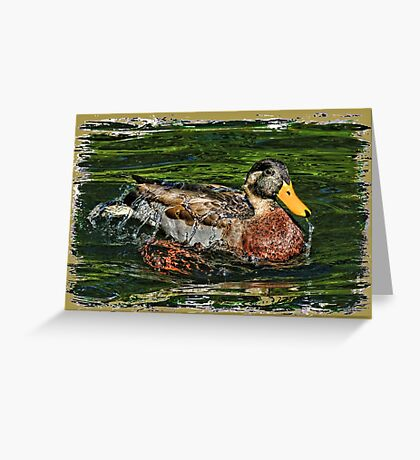 Water Off A Ducks Back 2 Greeting Card