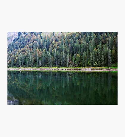 Autumn greenery over the lake Photographic Print