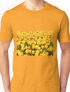 yellow and red Stresa tulips abloom  Unisex T-Shirt