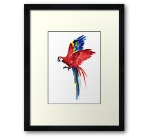 Macaw Red Blue Parrot Watercolor Painting Tropical Bird  Framed Print