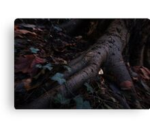 Roots and Earth Canvas Print