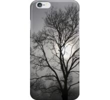 Foggy Morning iPhone Case/Skin