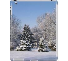 Snowy Landscape iPad Case/Skin