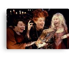 Sameberbatch Canvas Print