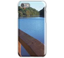 Observing Fall iPhone Case/Skin