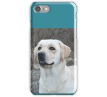 Labrador iPhone Case/Skin