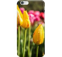 Pink and yellow Tulips after the rain iPhone Case/Skin