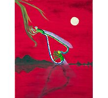 Full-moon Lover - Two Loving Dragonflies Photographic Print