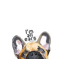Flappy ears Photographic Print