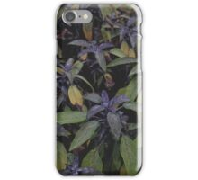Botanic Gardens iPhone Case/Skin