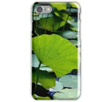Water Lily Leaves iPhone Case/Skin