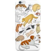 Sleeping Dog 101 iPhone Case/Skin