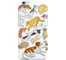 Sleeping Dog 101 iPhone Case/Skin
