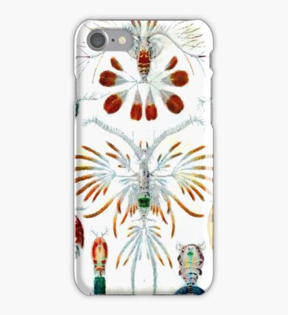 Crustaceans iPhone Case iPhone Case/Skin