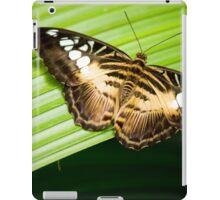 Asian Clipper iPad Case/Skin