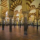 La Mezquita Interior - Cordoba - Spain by TonyCrehan