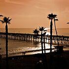 California Sunset by Ann  Van Breemen