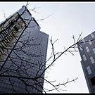 Urbia - Skyscrapers by raevan