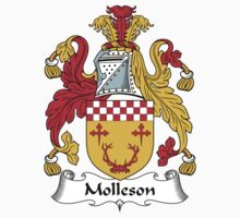 Molleson Coat of Arms (Scottish) Kids Clothes