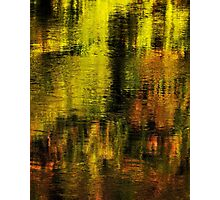Gold on Rhone river Photographic Print