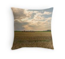 Landscape France / Ain Throw Pillow