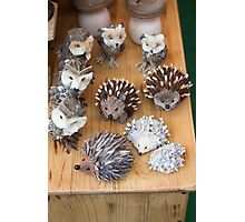 hedgehogs and owls handma Photographic Print