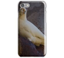 The Tree Hollow iPhone Case/Skin