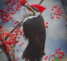 Pileated Woodpecker by shutterbug2010