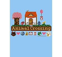 Animal Crossing home sampler Photographic Print