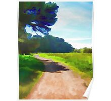 Path in a Park Poster